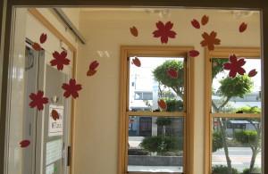 正面入口桜の花びら (4)