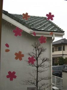 コンタクトレンズ室桜の花びら (4)